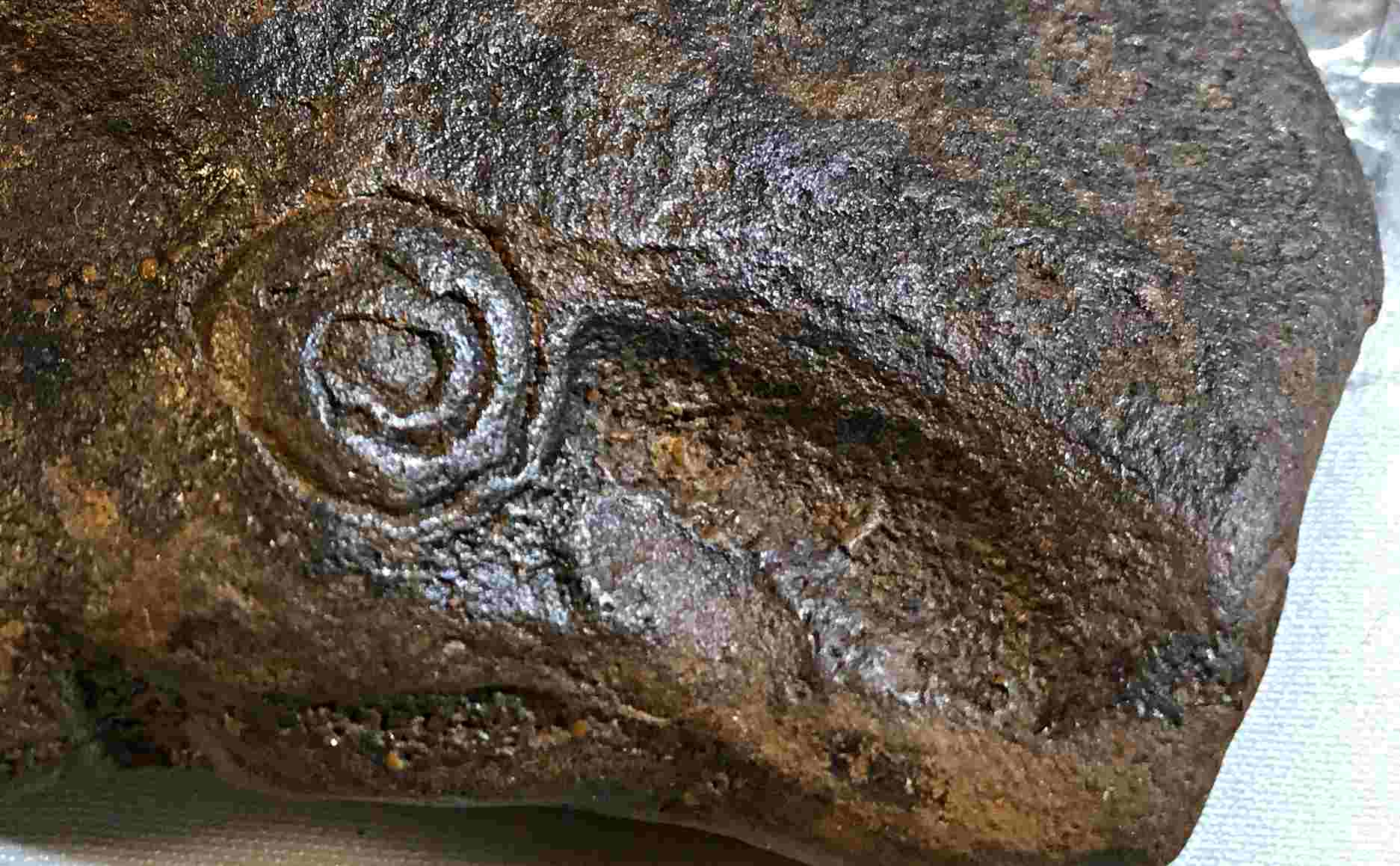 1 C 42 petroglyph CLOSE UP IMG_8222 SM